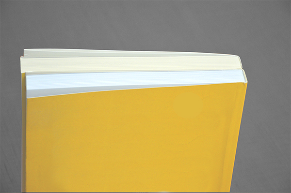 Differences in paper color, paper finish, and opacity may indicate that a book is a counterfeit.